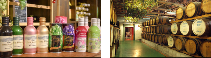 モンデ酒造(MONDE WINE)缶ワイン