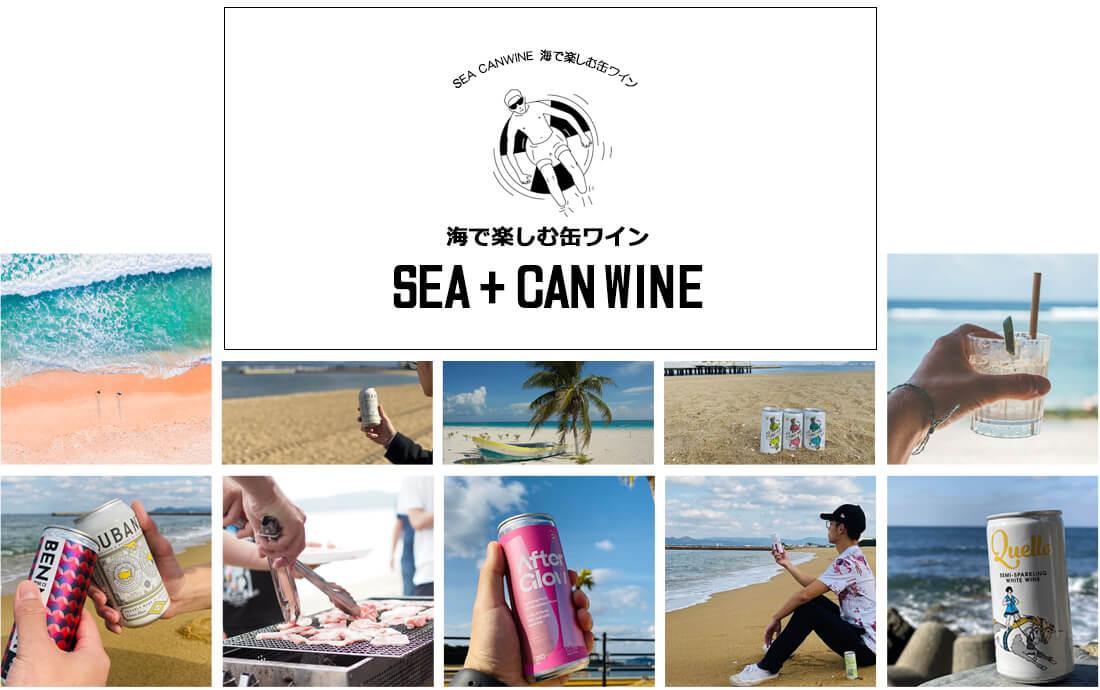 缶ワインでお酒の種類を豊富に。海で盛り上げる新しいお酒